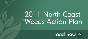 Weeds Action Plan